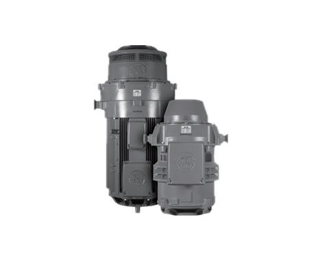 垂直泵NEMA电机