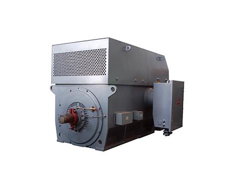 高压大型普通型三相异步电动机