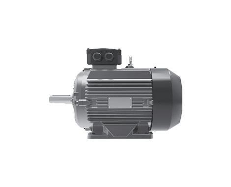 WE3系列超高效三相异步电动机